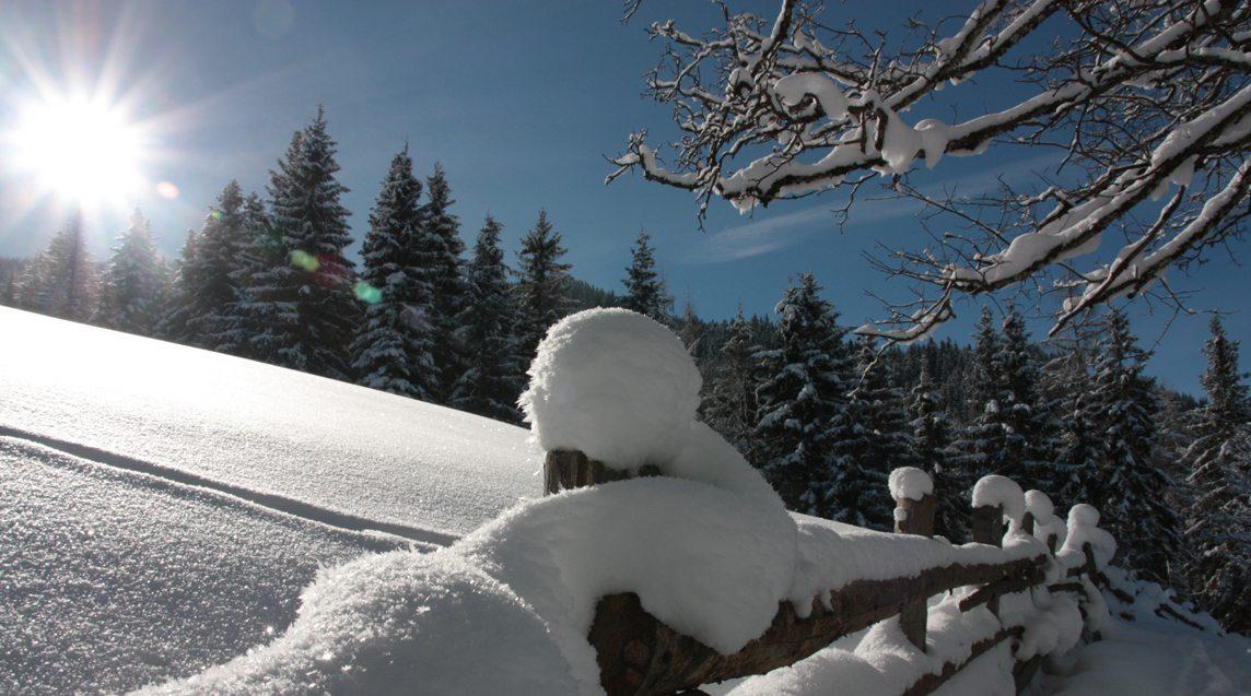 Ferienwohnung Gföller in Flachau ideales Basislager für erholsamen Urlaub